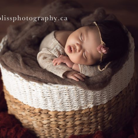 Salmon Arm Newborn Photographer   Baby Bliss Photography   www.babyblissphotography.ca